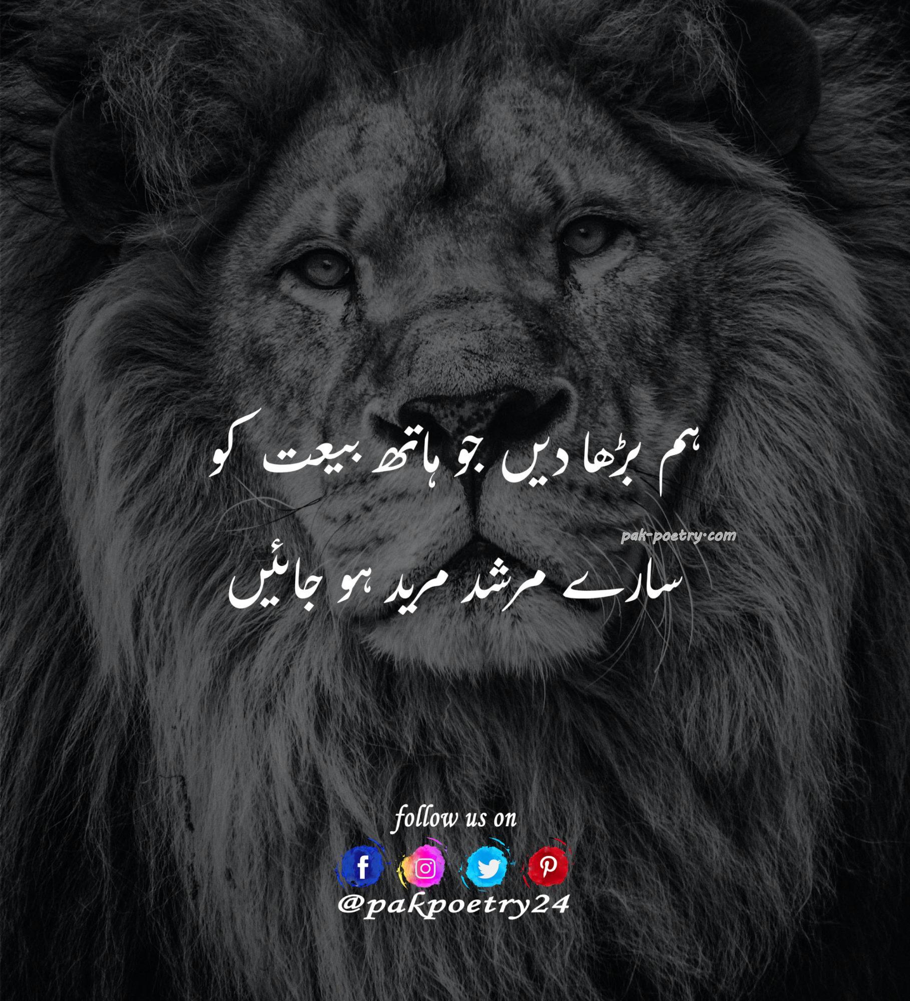 attitude poetry