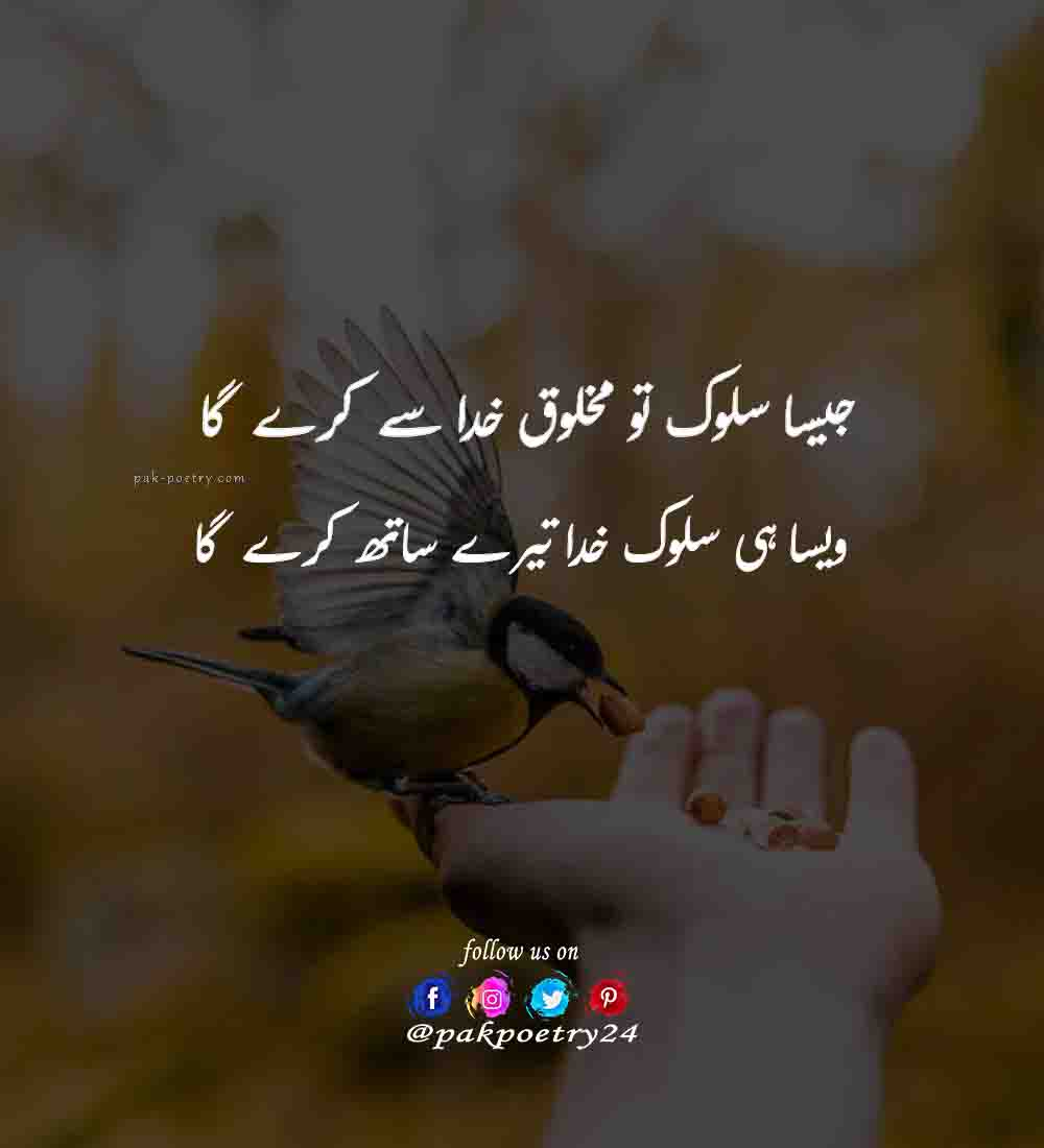 urdu poetry, poetry in urdu, poetry urdu, poetry, urdu shayari, potry in urdu, baat poetry, poetry.in.urdu, urdu poetry pic, poetry into urdu, urdu. poetry, porty urdu, urdu pietry, pics, quotes in urdu, islamic poetry, islamic poetry in urdu, islamic images, allah poetry, poetry islamic, allah poetry in urdu, allah islamic poetry, allah islamic poetry in urdu, poetry about allah, poetry on allah, poetry allah, poetry for allah, islamic poetry about allah in urdu, islamic poetry urdu, poetry in urdu islamic, islamic poetry status, urdu islamic poetry, islami poetry, best islamic poetry, islamic poetry pics, allah islamic images, allah love poetry,
