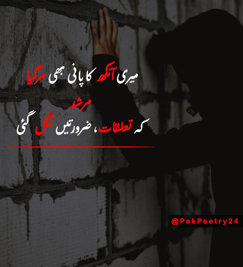murshid poetry status